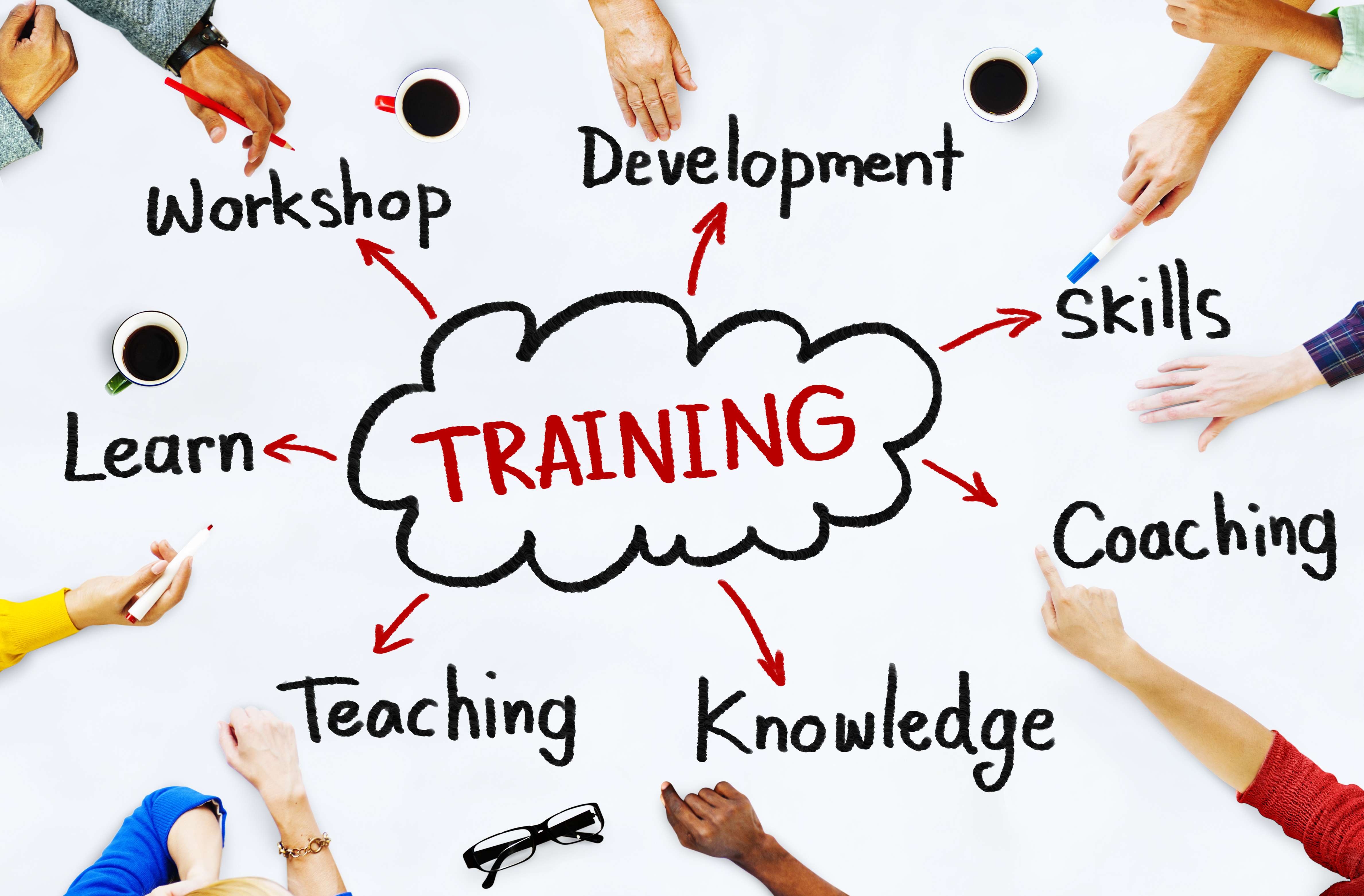 Training And Development For Corporate Segment